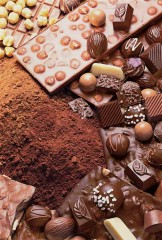 festa-cioccolato.jpg